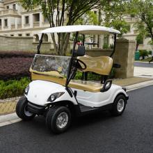 carrito de golf eléctrico con 2 asientos traseros