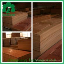 HDF/MDF Veneer Moulded Door Skin for Interior Door