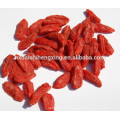 Boxthorn,Ningxia Yishaotang Goji berry dried fruit to export,Dried Goji berries fruit Ningxia Dried Goji berry nutrition