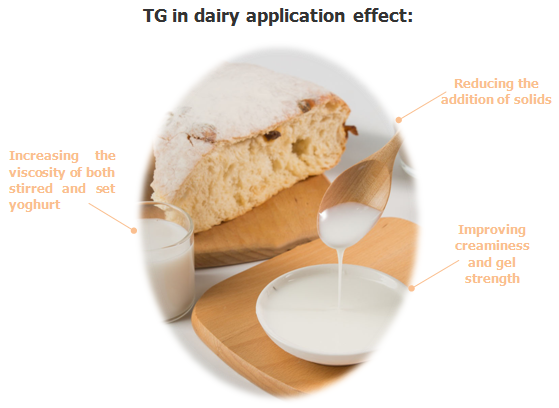 TGase for dairy