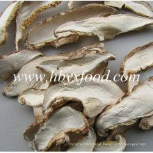 Organic White Dried Mushroom Slice From Shiitake Mushroom Cap