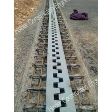 Long Finger Bridge Expansion Joint in China