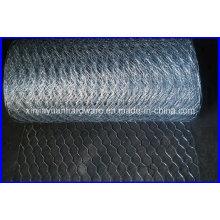 EUA Padrão Stucco Hexagonal Wire Netting