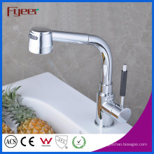 Fyeer Flexible Hose for Kitchen Faucet with Pull out Spray