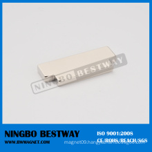 Customized Shape Neodymium Magnet