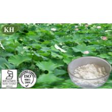 10: 1 Lotus Leaf Extract