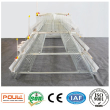 Livestock Chicken Cages for Layer Hen