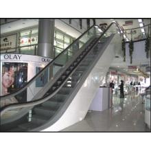 Aksen Escalator 30 et 35 Degree Type de porte intérieure et extérieure