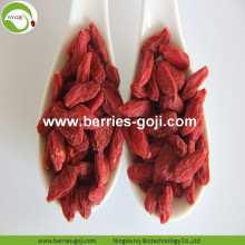 Factory Supply Obst Premium Super Grade Goji Beeren