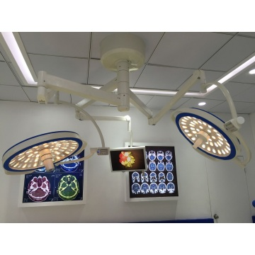 Ceiling Double Domes Bulat Type LED Surgical Lamp
