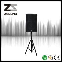 Zsound Р15 450ВТ полном объеме гимназии монитор Акустическая система