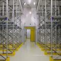 PU-Paneel-Bananen-reifende kalte Räume