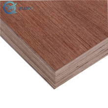 18mm eucalyptus core container plywood 1220x2440mm marine plywood for trailer