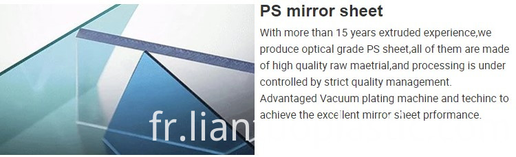 Ps Mirror Detail