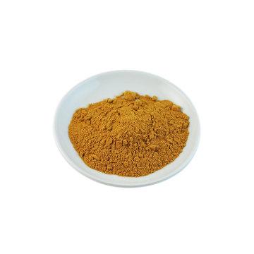 Poudre d'extrait de thé vert biologique