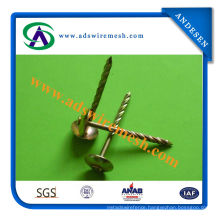 Galvanized Coil Roofing Nail (ADS-RN-02)