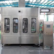 Machine de remplissage complète d'eau de fournisseur professionnel