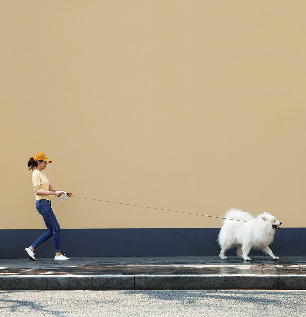 Xiaomi 3 0m Dog Traction Rope Pet