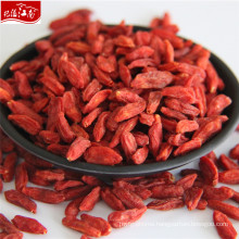 New harvest factory supply bulk chinese wolfberry