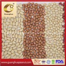 Hot Sale Blanched Peanut Kernel New Crop