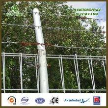 Горячая оцинкованная / HDG защита Brc Fence / Roll Top Fence Panel для рынка Брунея