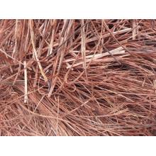 No. 1 Sucata de fio de cobre com 99.99% de pureza / Red Scrap Copper Wire / Milberry Copper