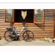2017 лучшее качество 8fun середине привод электрический велосипед недорогой,высокая мощность электрический велосипед для продажи