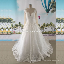 Long Sleeves Wedding Dress V Neck Lace Application Borders See Through Nude Tulle Back Ball Gown Wedding Gown