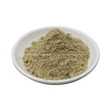 poudre de champignons shiitake séchés poudre de lentinus edodes