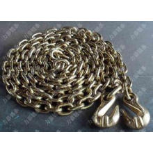Transport Chain with Fitting Hook