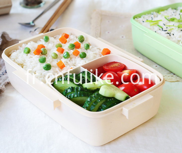 Lunch Box For Adults