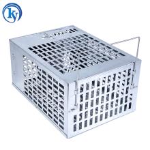 Humane Wooden Base Metal Rat Catcher cage