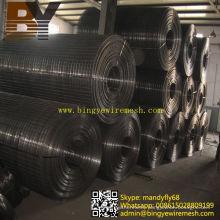 Heavy Black Welded Wire Mesh