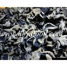 2-2.5cm Dehydrated Organic Yellow Back Fungus