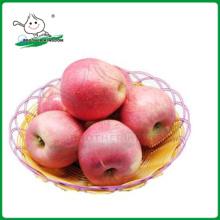 QINGUAN maçã / fresco Qinguan Apple 9kg