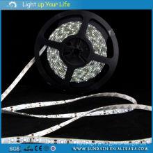 Luz de tira do diodo emissor de luz (5Meter / rolo)