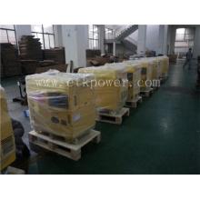 Strong Carton Packing Diesel Generator Set (6KW)
