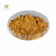 High Quality of Natural and Pure Bitter Melon Extract with 10% Charantin