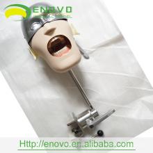 АН-У6 высокое качество конкурентоспособная Цена II типа зубной головная модель Производитель в Китае