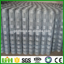 Factory Price Cheap Field Fence/ Cattle Fence /Grassland Fence