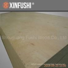 Exportación de madera contrachapada de abedul a Amercian