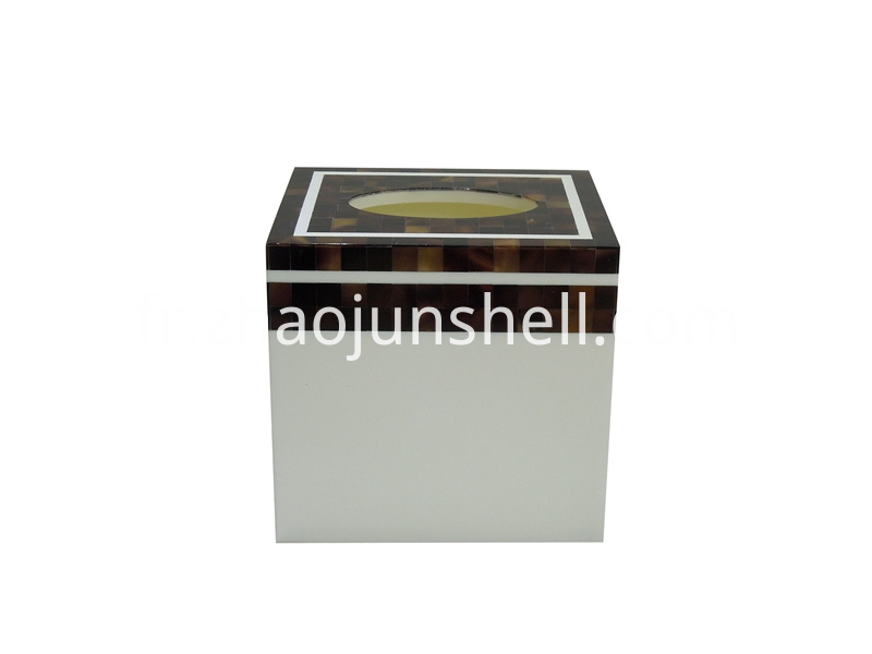 pen shell tissue box