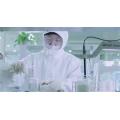 polvo Olivetol 3 5-hidroxipentilbenceno CAS 500-66-3