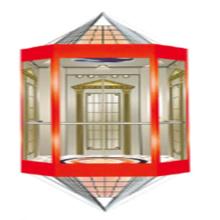Fjzy Panoramic Cheap Elevator-Ascensor2052