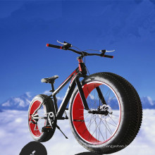 La Chine de haute qualité Hotsale OEM Fat Bike Fat Bike Fat Bike
