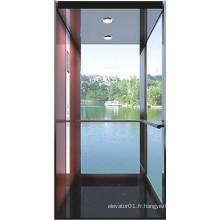 Verre Résidentiel Ascenseur Ascenseur pour maison Fabricant