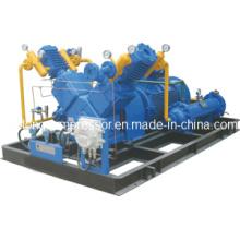 CNG Compressor LPG Compressor LNG Compressor Nitrogen Compressor (Dw-0.9/40-250)