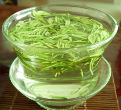 Green Tea Extract L-theanine