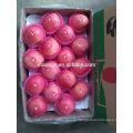 высокое качество свежих яблок для продажи