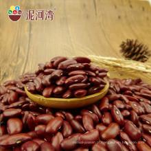 Pequenos grãos vermelhos secos a granel para feijões enlatados